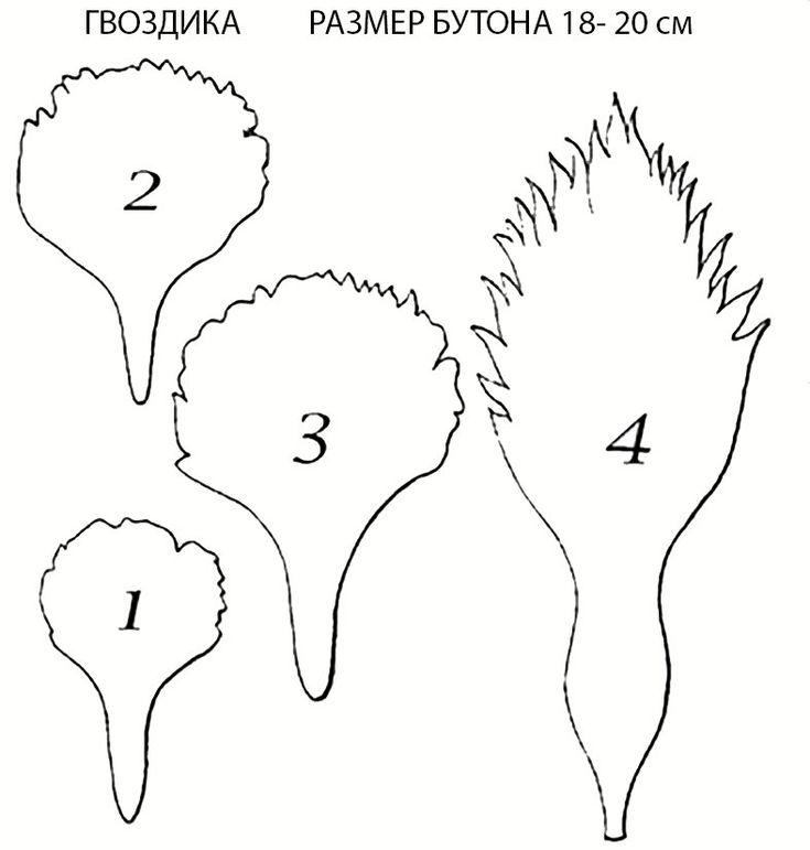 Гвоздики из бумаги своими руками для детей - мастер-классы с шаблонами и схемами