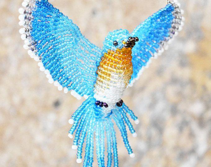 Птица колибри - интересные факты и фото