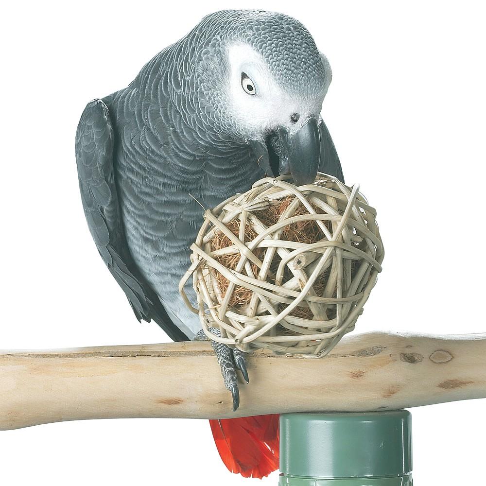 Игрушки для волнистых попугаев: виды, выбор, создание своими руками