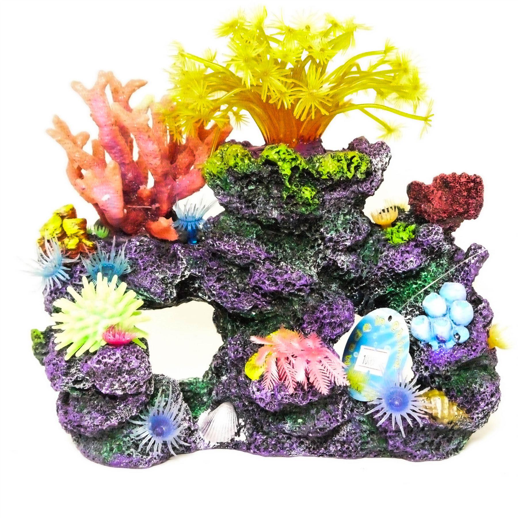 Камень коралл: магические свойства, виды и цвета, кому подходит по знаку зодиака