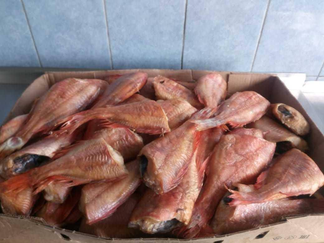 Горячее копчение окуня / заготовка рыбы / tvcook: пошаговые рецепты с фото