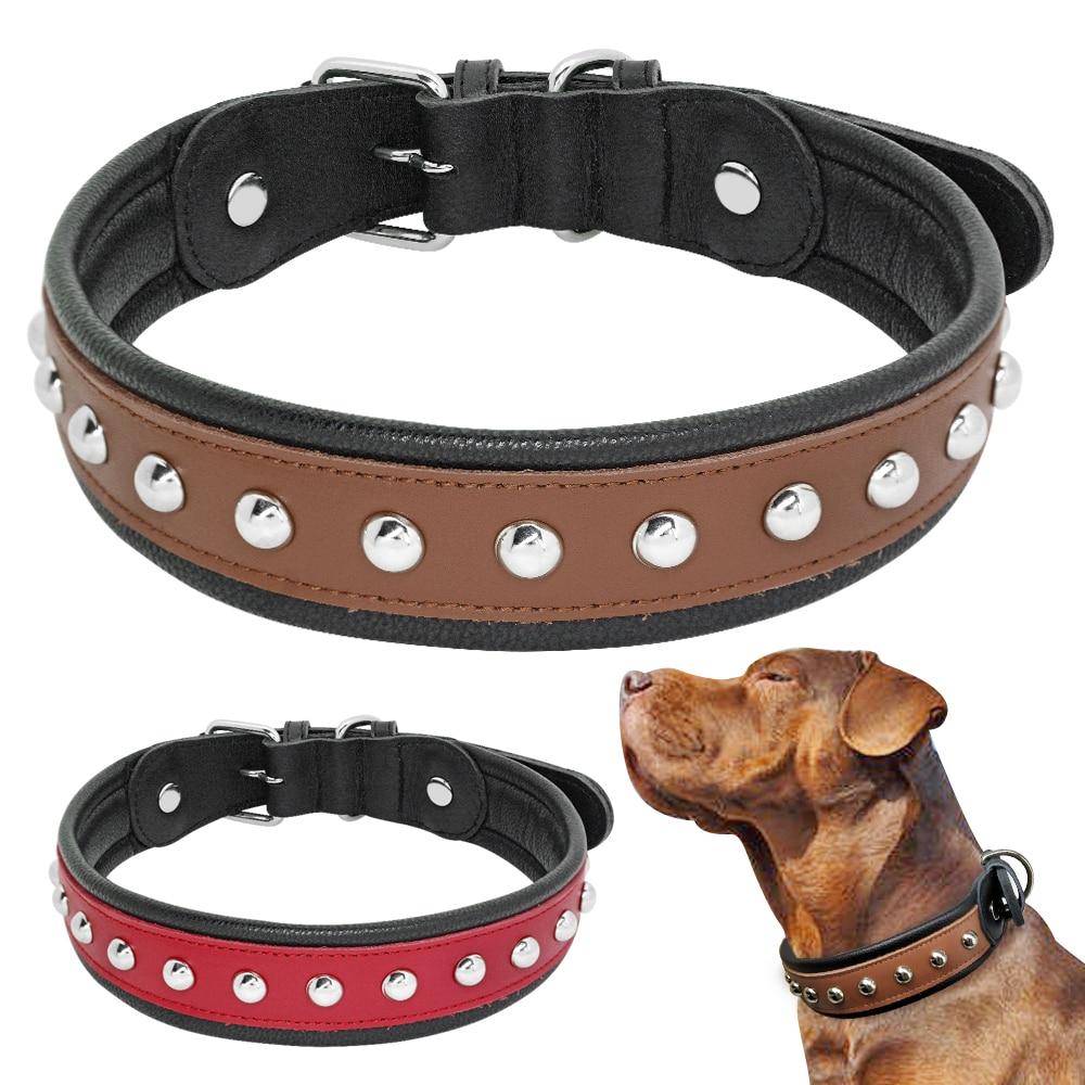 Ошейники для собак (47 фото): как выбрать кожаный ошейник и с феромонами для щенка и правильно надеть? таблица размеров собачьих ошейников для маленьких и крупных собак