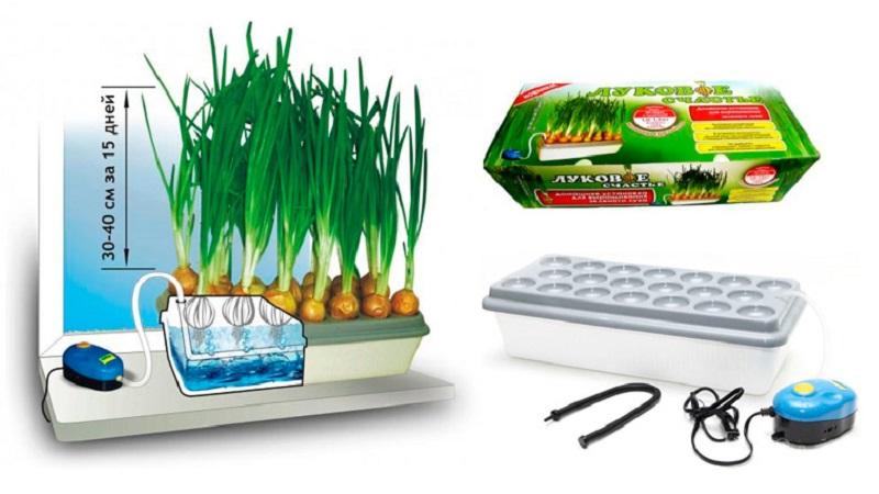 Самодельная установка для выращивания зеленого лука - пера. - своими руками