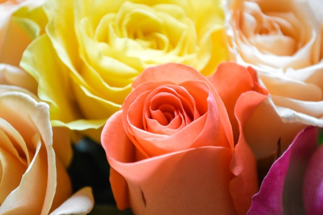 Яркие поздравления с 8 марта для каждой женщины
