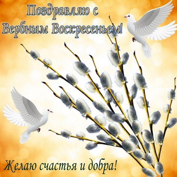 Вербное воскресенье поздравления: в стихах, очень красивые