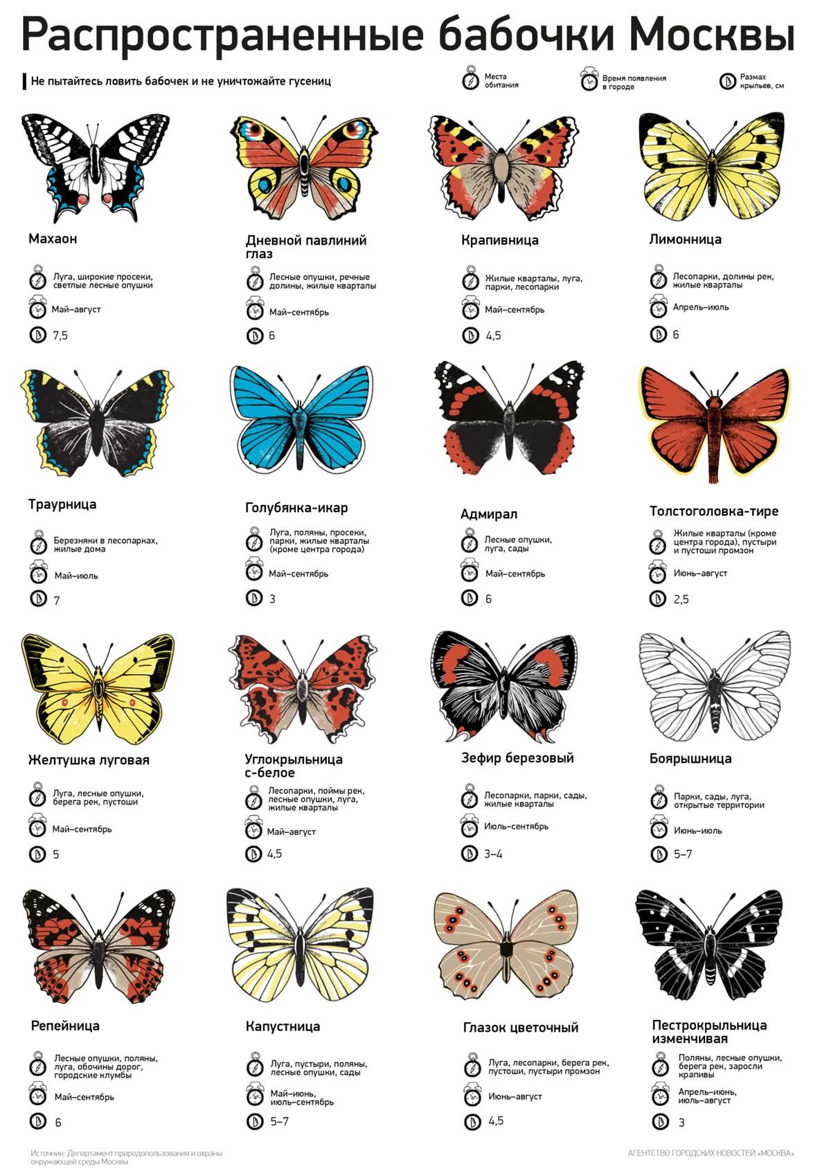 Маджонг бабочки 2