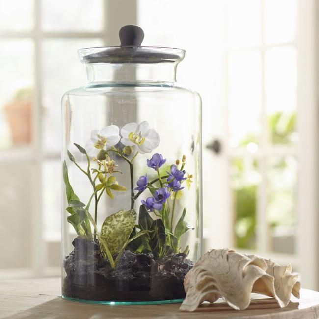 Как оформить флорариум своими руками: пошаговая инструкция и лучшие способы +видео