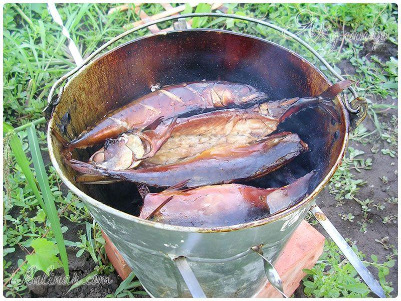 Как закоптить рыбу на даче - экспресс газета