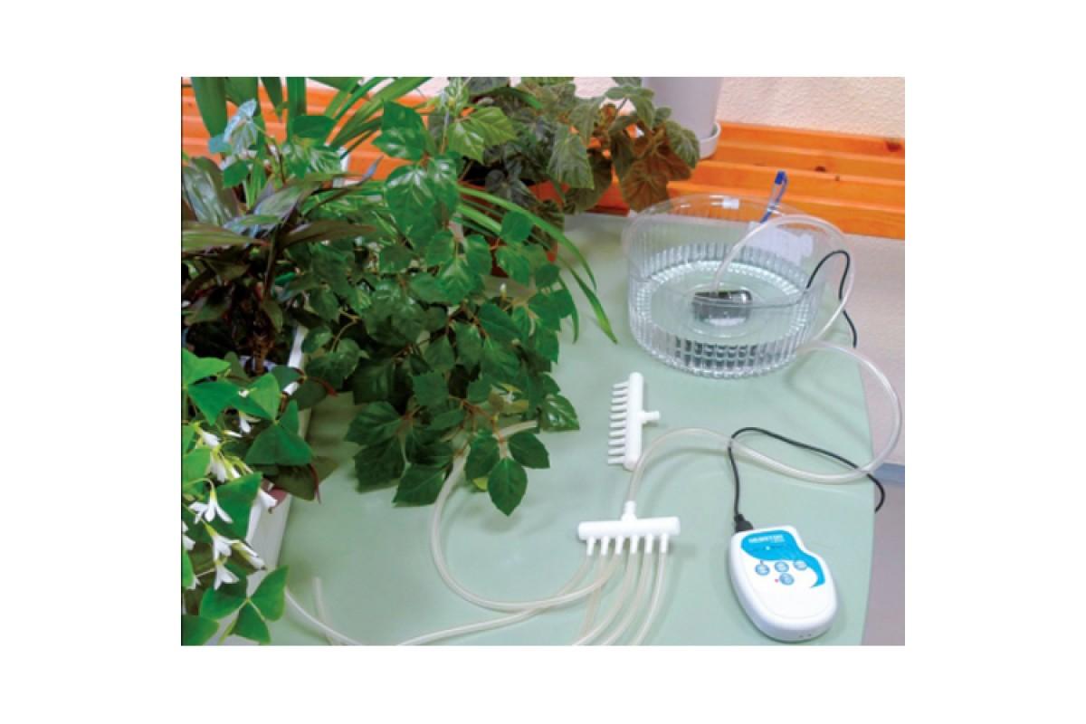 9 вариантов автополива для комнатных растений