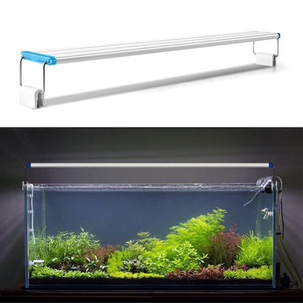 Правильное освещение для аквариума и какое освещение должно быть?