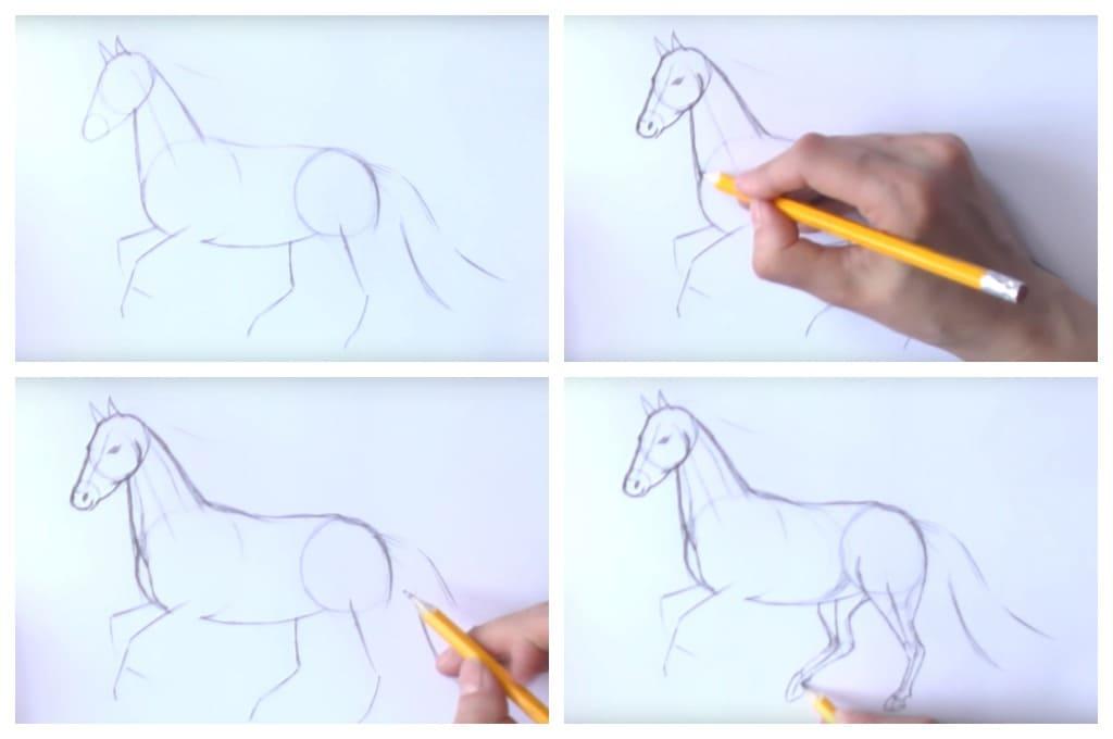 Как нарисовать лошадь поэтапно   drawingforall.ru