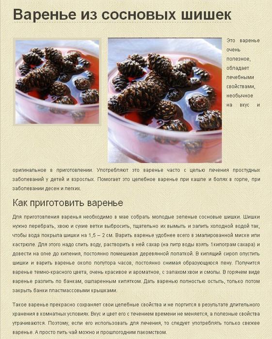 Лесные рецепты: варенье из сосновых шишек и еловый сироп. как приготовить варенье из шишек - рецепт