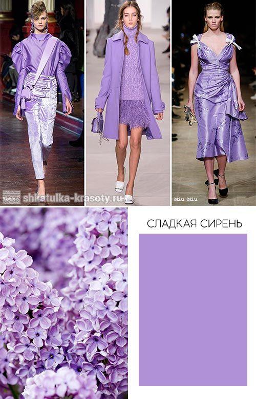 42 растения с синими цветками | дизайн участка (огород.ru)