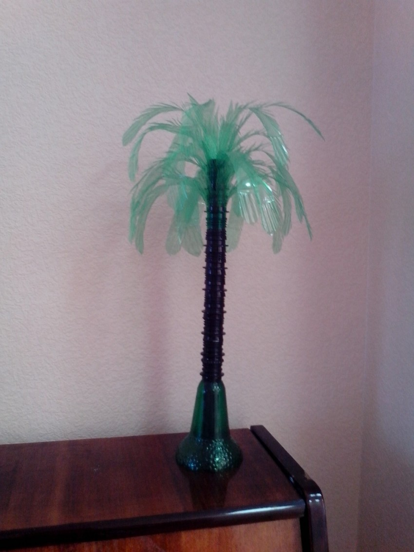 Как сделать пальму из пластиковых бутылок: детальная инструкция пошагово с фото – zelenj.ru – все про садоводство, земледелие, фермерство и птицеводство