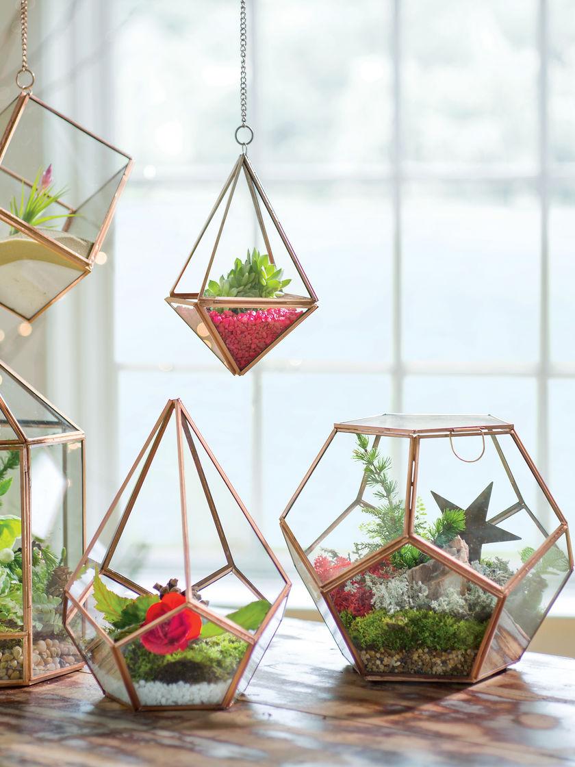 Делаем флорариум своими руками: пошаговая инструкция для начинающих флористов - огород, сад, балкон - медиаплатформа миртесен