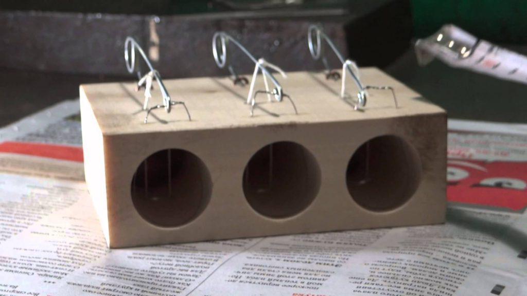 Как зарядить мышеловку и правильно ее поставить