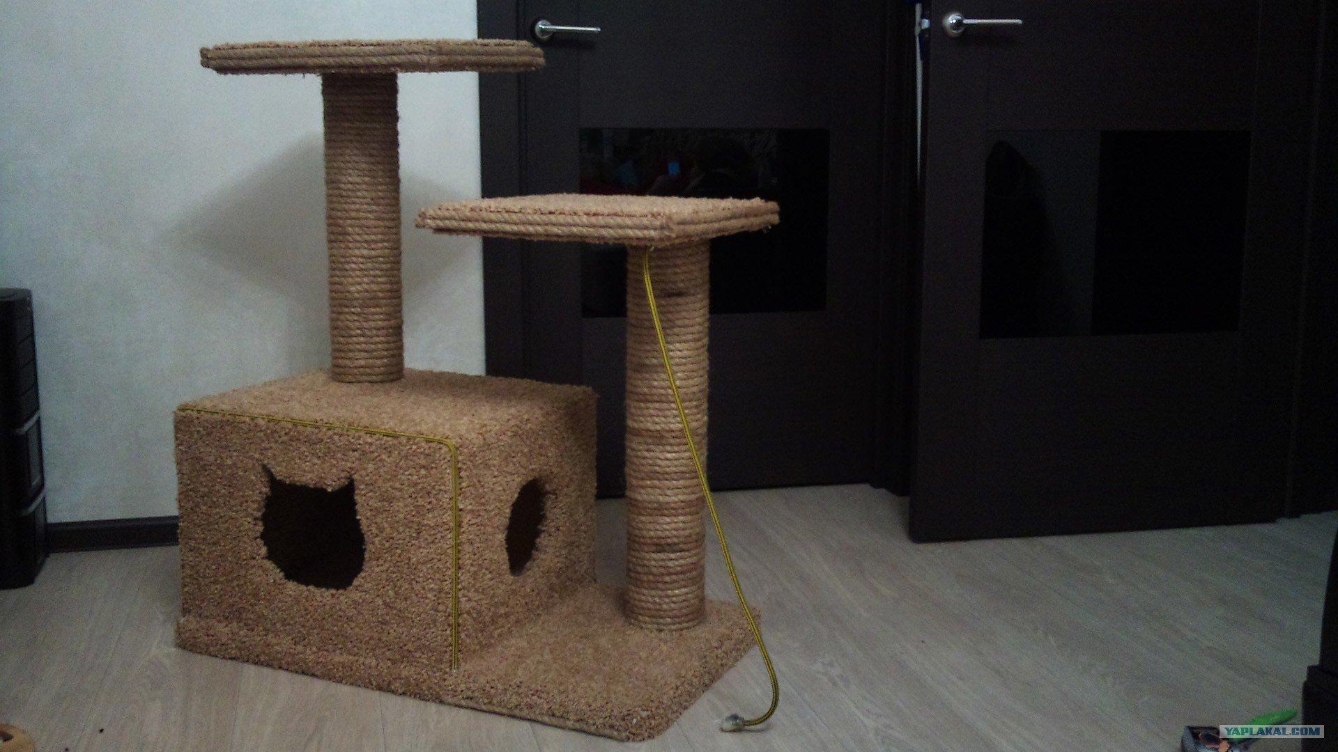 Домик для кошки своими руками: фото, чертежи, схемы, видео домик для кошки своими руками: фото, чертежи, схемы, видео