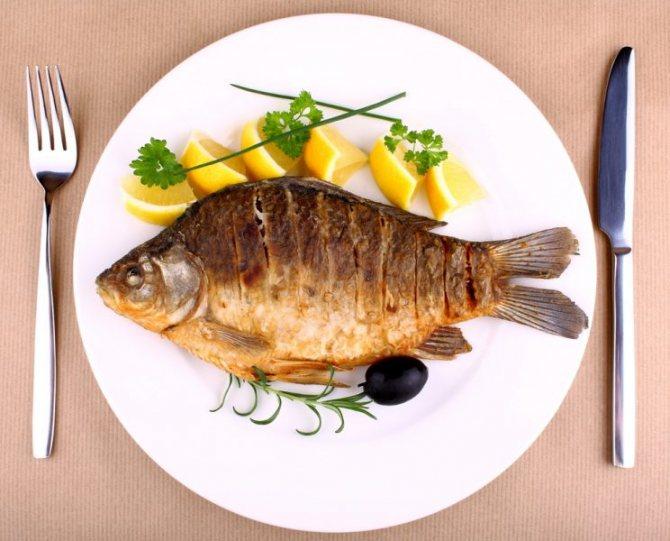 Сонник рыба на тарелке. к чему снится рыба на тарелке видеть во сне - сонник дома солнца