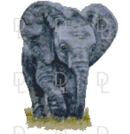 Слон – описание, характеристики, ареал, виды, питание, размножение, сколько весит, фото и видео
