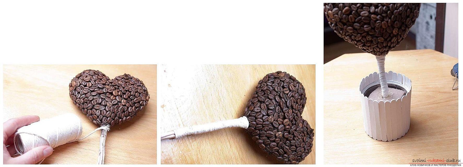 Как сделать топиарий (70 фото) - пошаговые инструкции для начинающих