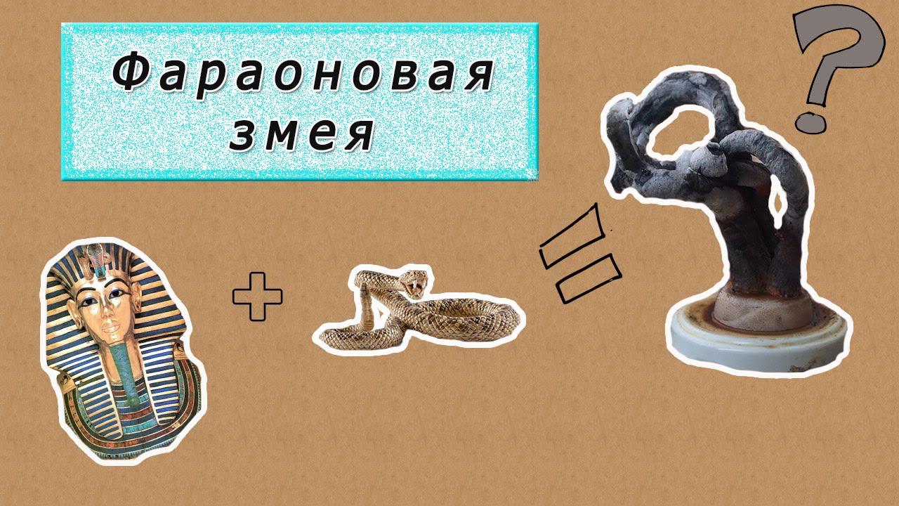 Фараоновы змеи: занимательная химия. как изготовить фараоновых змей в домашних условиях?