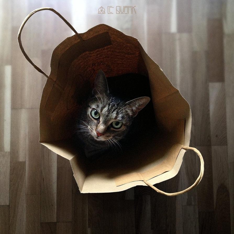 """Открытка новый год коллаж оригами объёмная открытка """"лунный кот"""" бумага"""