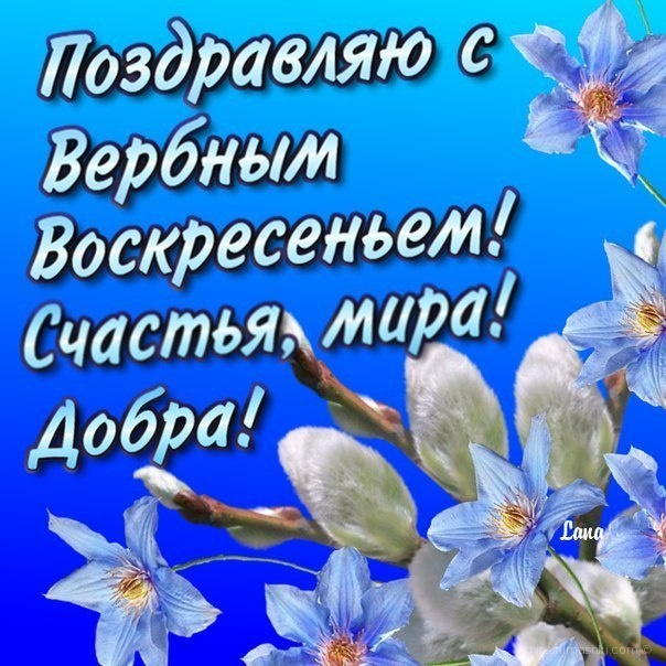 Поздравления с вербным воскресеньем в стихах и смс