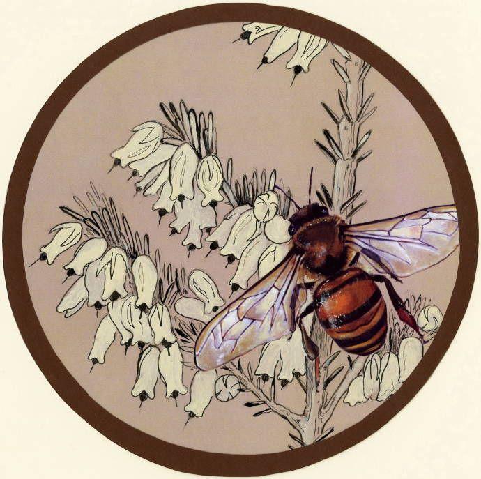 6 секретов цветника, который привлекает пчел