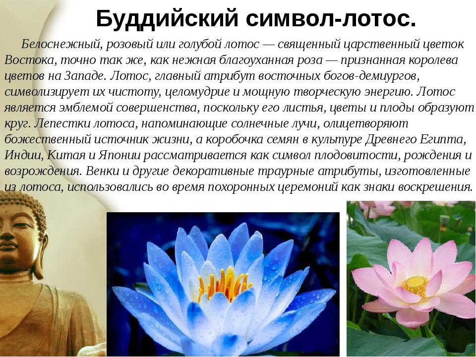 Какое значение имеет символ цветка лотоса? как активировать и носить талисман?