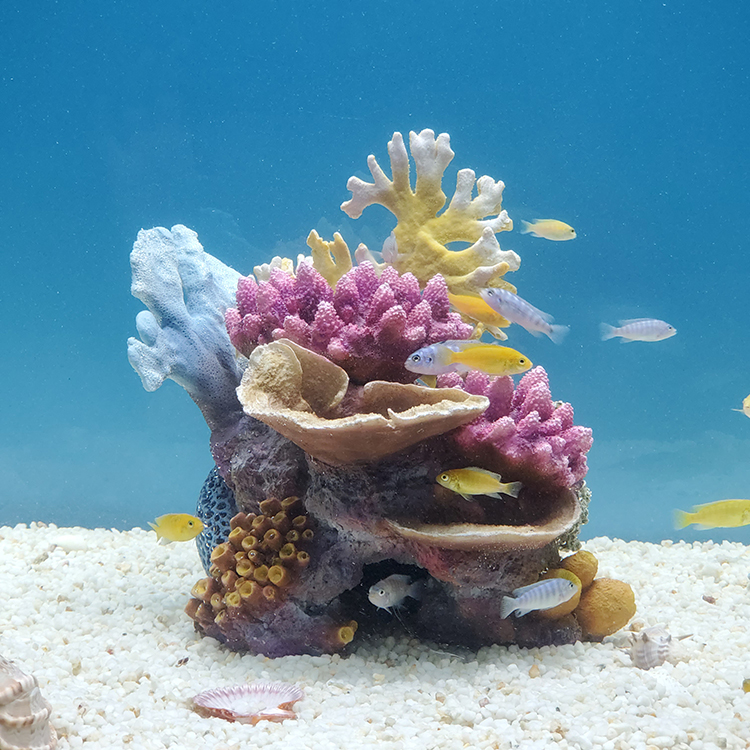 Коралловая вода – мифы и факты. отзывы. применение. корал майн