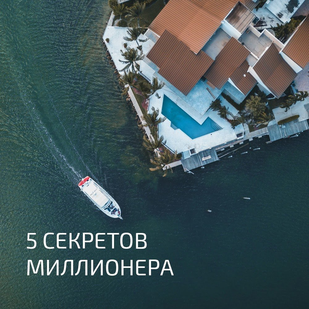 ✅ как вырастить букет цветов всего за пару часов - eco-podarki.ru