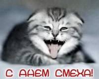 С днем смеха! прикольные поздравления с 1 апреля 2020 днем дурака - смс короткие в стихах в день первоапрельского дурака