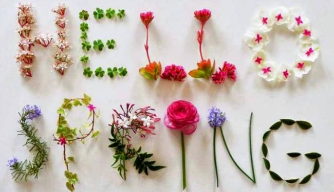 Прикольные открытки с первым днем весны