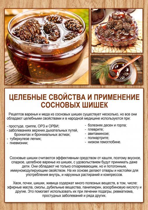 Варенье из сосновых шишек: рецепты с фото пошагово