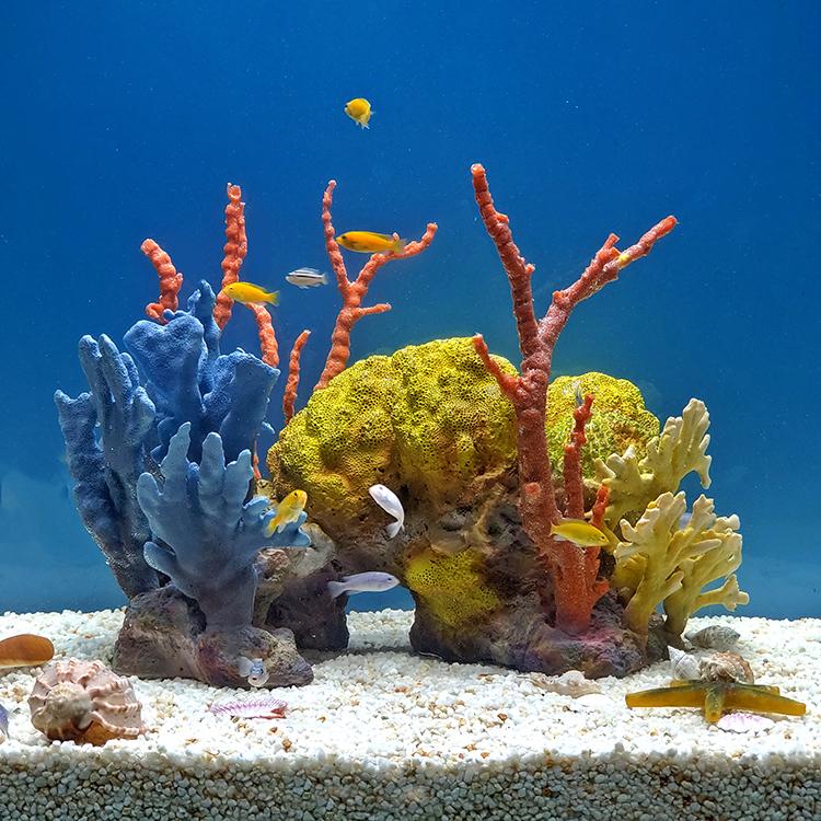 Кораллы своими руками! ( 5 мастер-классов ) » женский мир