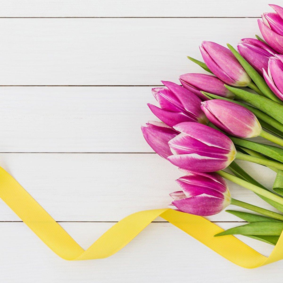 Все самое интересное о международном женском дне — 8 марта (история, факты, традиции, подарки, открытки)