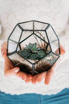 Мастер-класс: флорариум своими руками