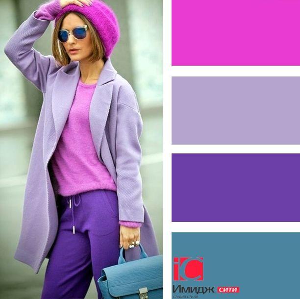 О фиолетовых цветах многолетниках: названия и описания самых нежных и красивых