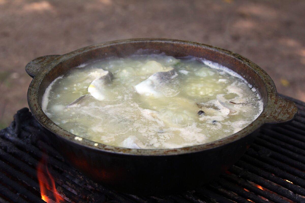 Варись, рыбка. как приготовить вкусную уху на костре   кухня   аиф челябинск