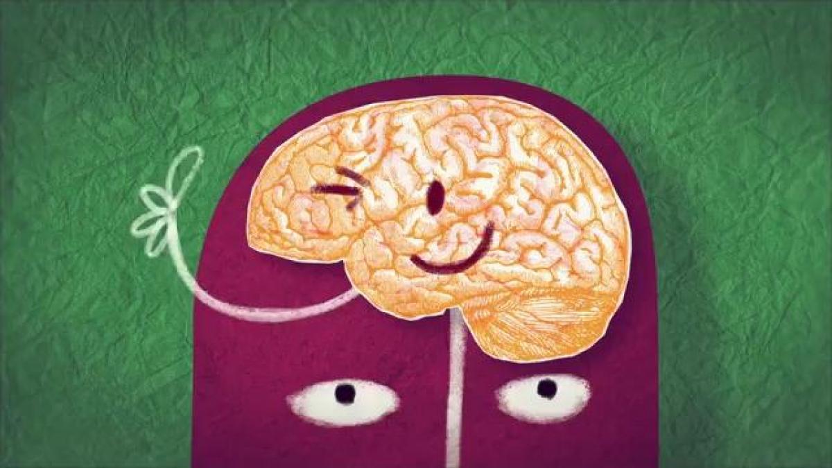 Как мозг обманывает нас каждый день