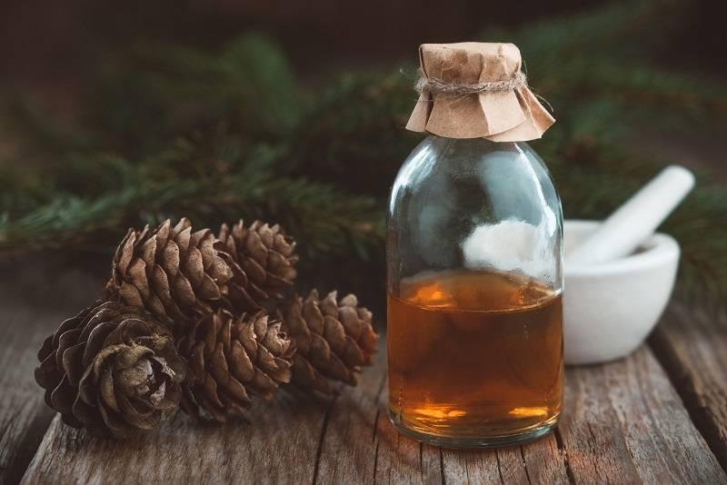 Сосновые шишки: лечебные свойства, когда собирать и как применять