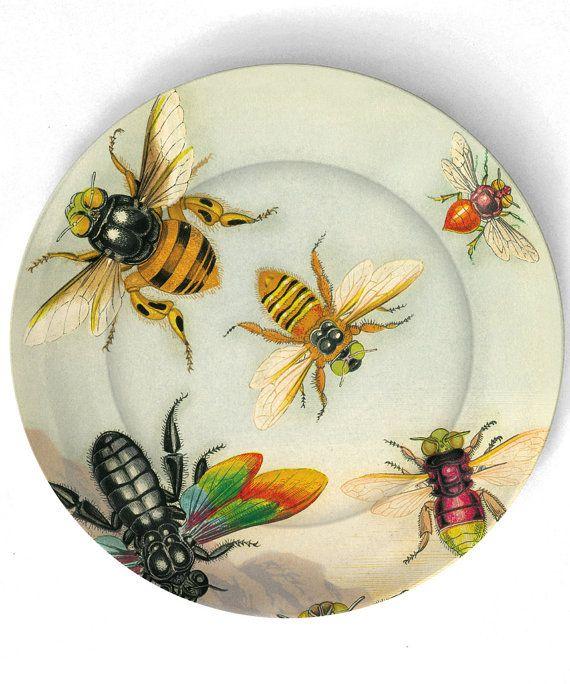 Как приманить пчел: цветы медоносыв саду