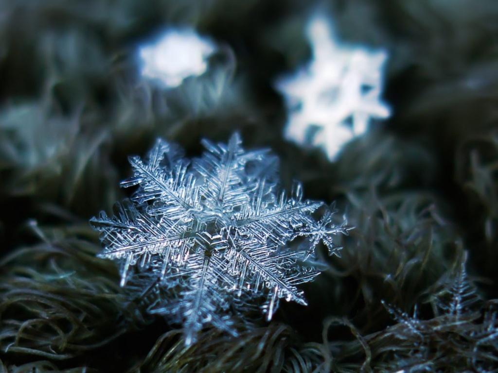 Как образуются снежинки – описание, что такое снежинка, форма снежинки, фото и видео