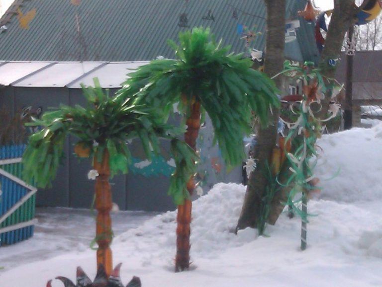 Как сделать пальму из бутылок: 105 фото подробного описания создания и сборки пластиковых пальм