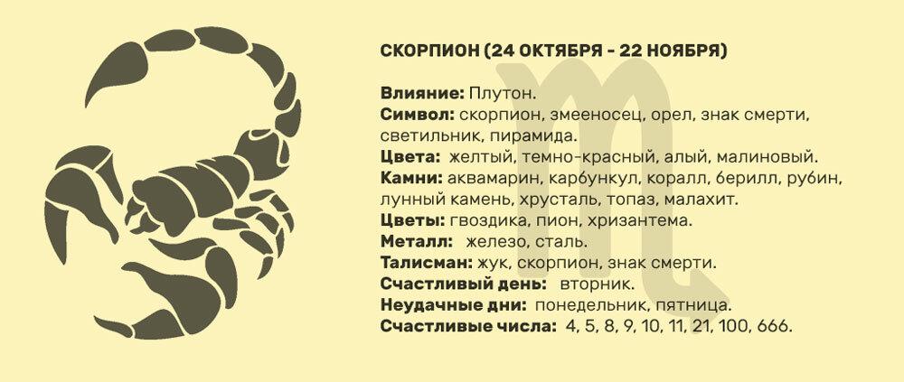 Скорпион: характеристика знака зодиака | astro7