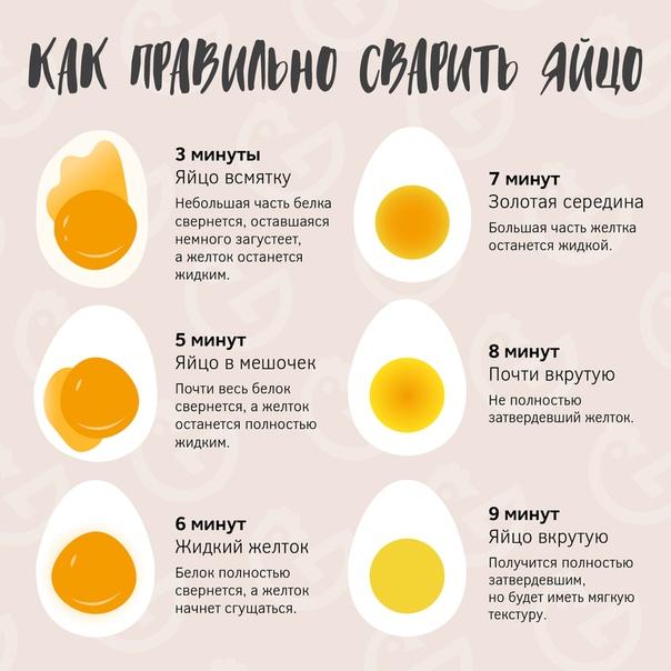 Сколько по времени варить яйца: вкрутую, всмятку, в мешочек, пашот