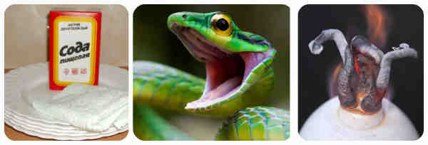 Фараоновы змеи: занимательная химия. как сделать фараоновых змей в домашних условиях?