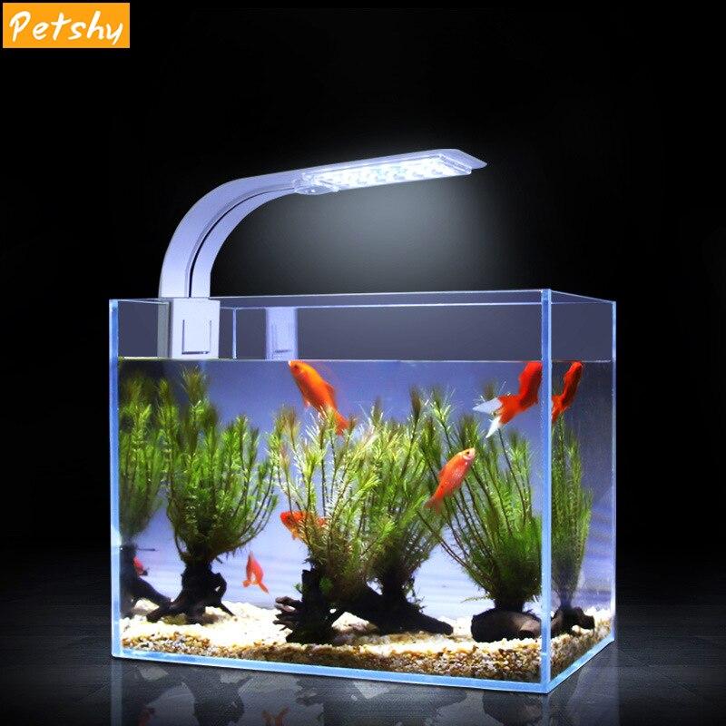 Лампа для аквариума: подбираем правильное освещение и режим светового дня