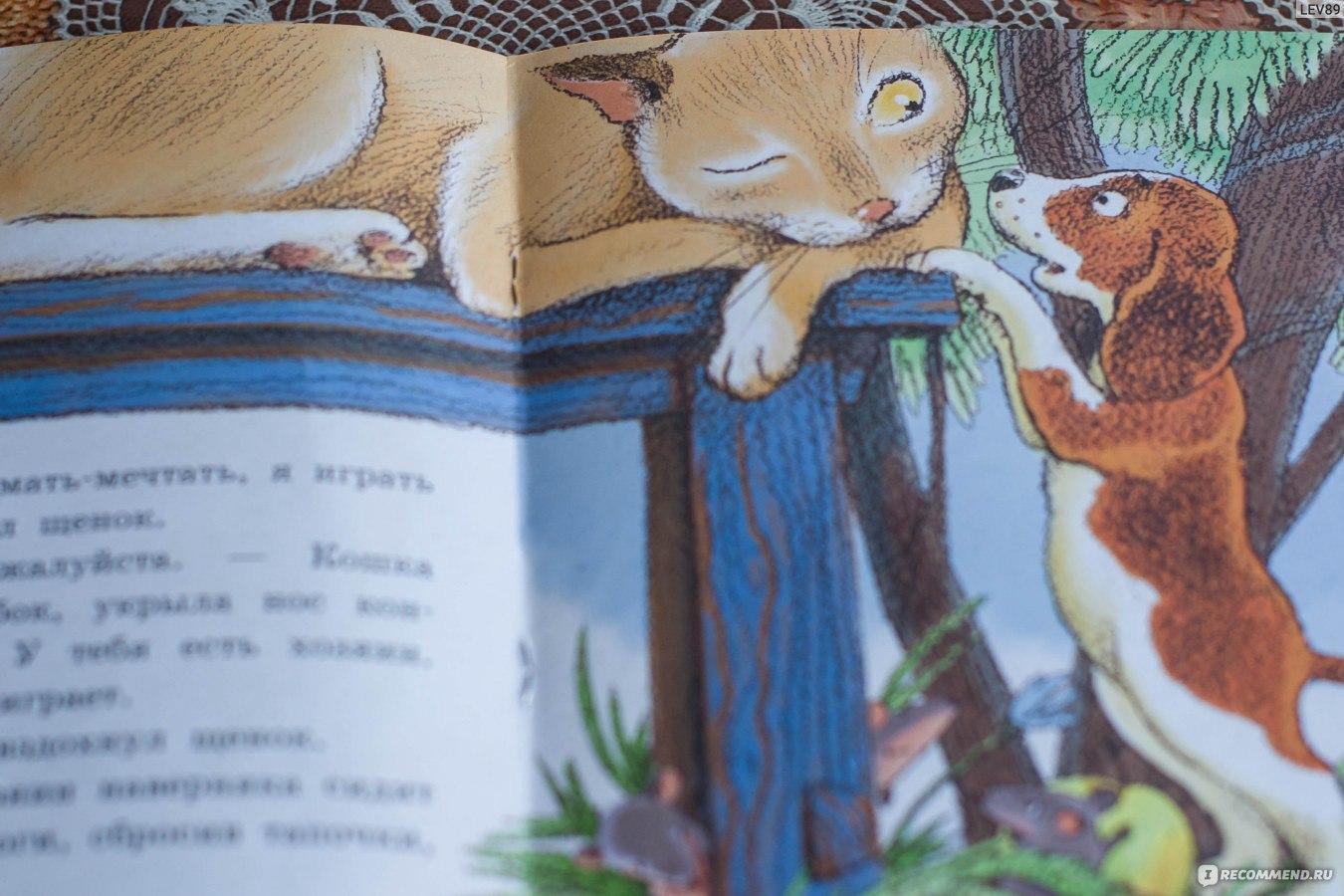 Сказка сова читать онлайн - бианки в.в.