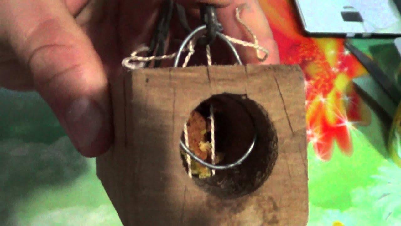 Безопасная мышеловка технологическая карта. мышеловка своими руками — инструкция для самодельных ловушек. разновидности мышеловок, изготовленных самостоятельно